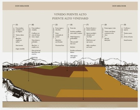 Don_Melchor_Puente_Alto_Vineyard_Parcel_Map