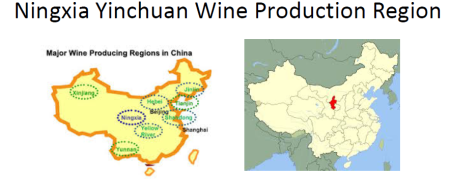 china-wine-region-ningxia