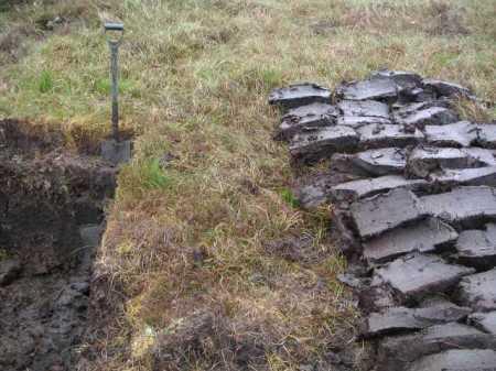 turfa Peat_Lewis