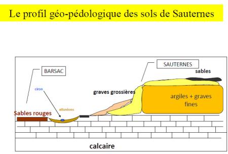 sauternes e barsac geologia