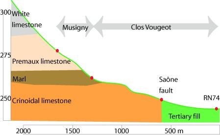 geologie vougeot e musigny