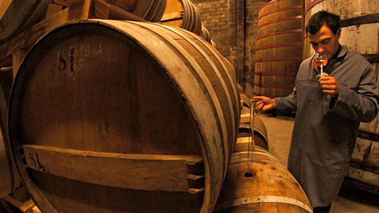 cognac e chene